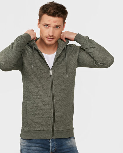 HEREN HOODED ZIP SWEATVEST Donkergroen
