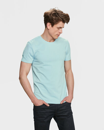 HEREN ORGANIC COTTON T-SHIRT Mintgroen