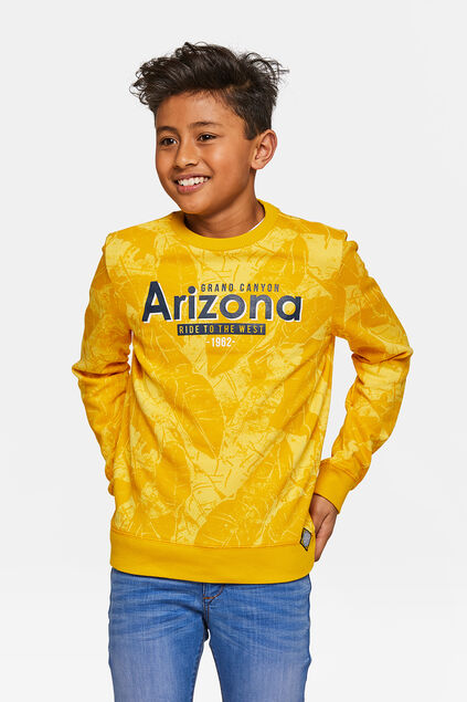Jongens Arizona sweater Okergeel