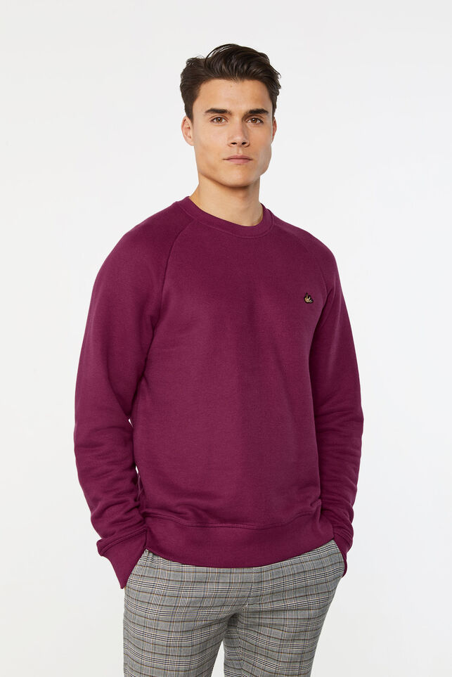 Heren sweater Paars