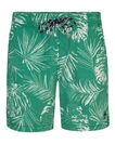 HEREN RAINFOREST PRINT ZWEMSHORT, Groen