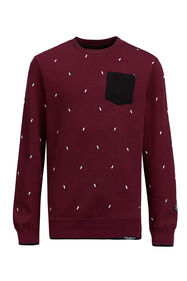 Jongens sweater met dessin_Jongens sweater met dessin, Bordeauxrood