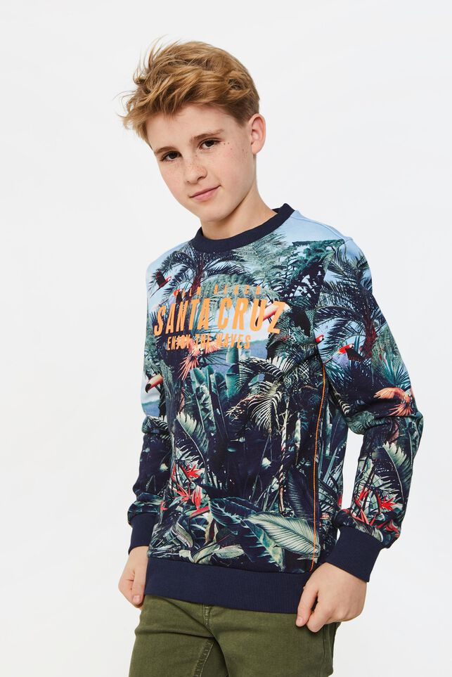 Jongens sweater met jungleprint Multikleur