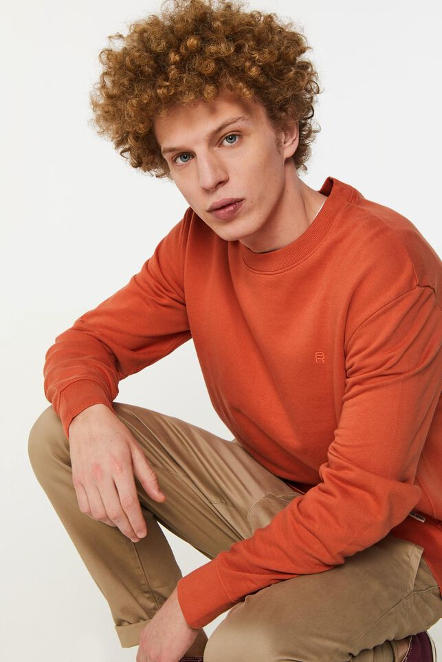 Heren Blue Ridge sweater Oranje