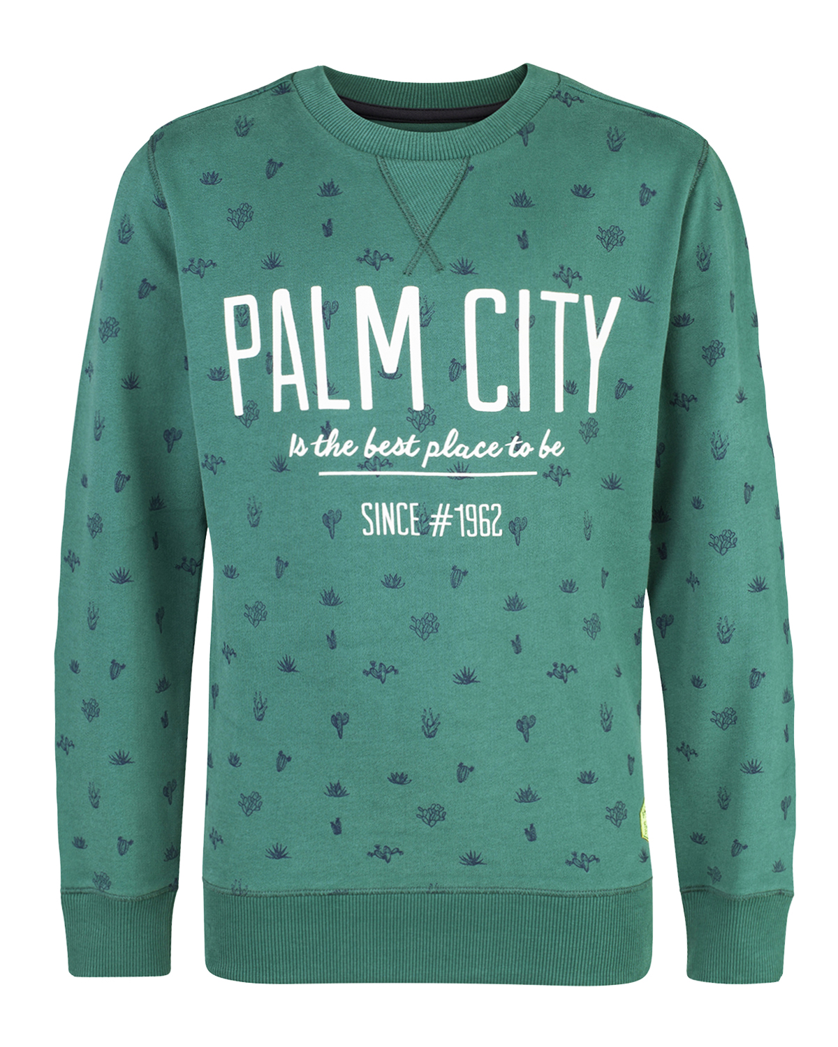 JONGENS CACTUS PRINT SWEATER | 80363958 WE Fashion